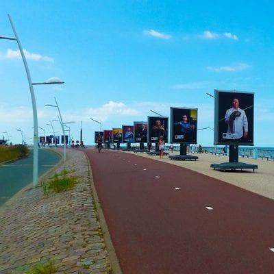 Stichting Noordzeevis - trotter - medium - portrait - Image Building - Scheveningen